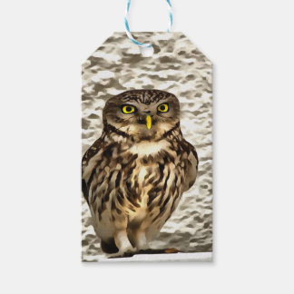 Small Owl In Camouflage Gift Tags