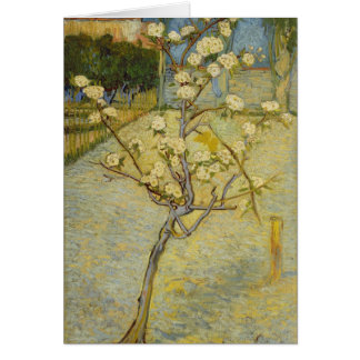 Small pear tree in blossom Card