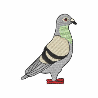 Small Pigeon