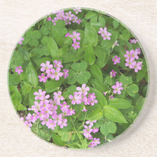 Small pink delicate wildflowers coaster
