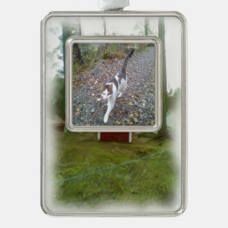 Small red building silver plated framed ornament