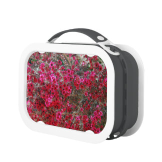 Small Red Flowers 2 Lunch Box