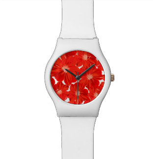 Small red flowers watch