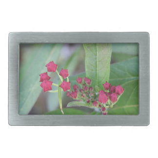 Small Spring Blooms Belt Buckles