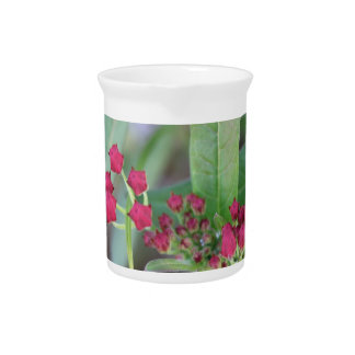 Small Spring Blooms Beverage Pitcher