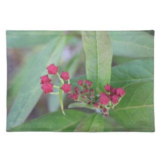 Small Spring Blooms Placemat