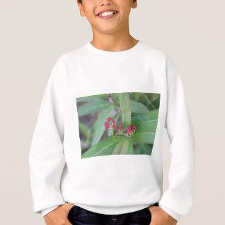 Small Spring Blooms Sweatshirt