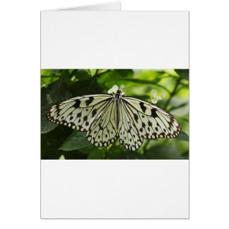 Small tote greeting card