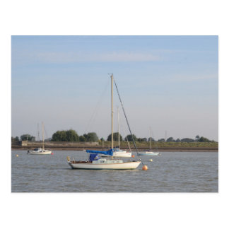 Small Yachts Postcard