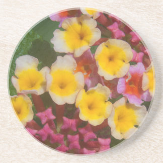 Small Yellow Tropical Flowers With Pink Buds Coaster