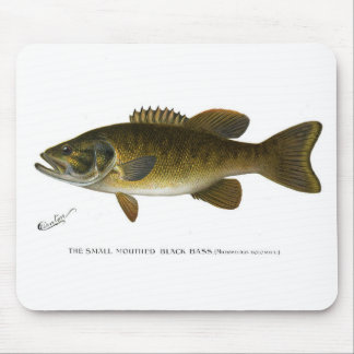 Smallmouth bass mouse pad