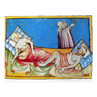 Smallpox in the Middle Ages Postcard