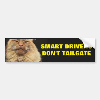 Smart Drivers Don't Tailgate. Mean Cat Bumper Sticker