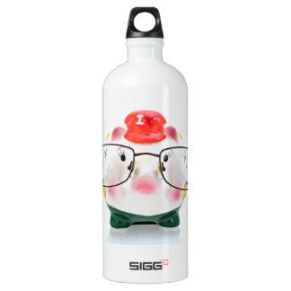 Smart Piggy Bank Water Bottle