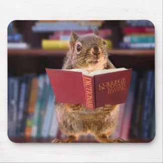 Smart Squirrel Reading a Dictionary Mousepads