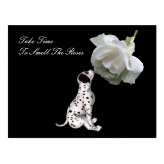Smell Roses Puppy Rose Inspirational Postcard