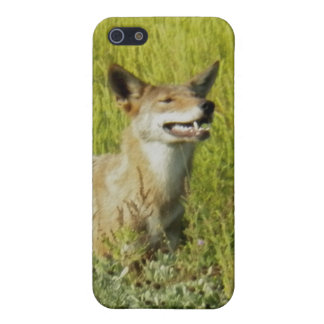 Smelling the Air by Leslie Peppers Case For iPhone 5/5S