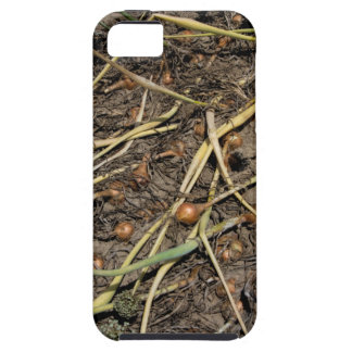 Smelly Onion Crop in the Field iPhone 5 Case