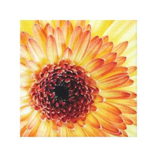 smile 12x12 Canvas Canvas Prints