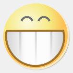 Smile Face Happy Grin Destiny Art Round Sticker