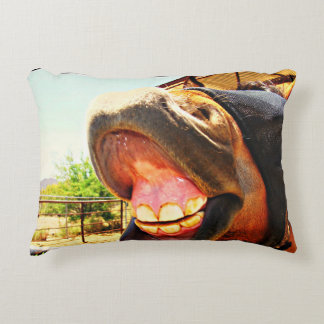 """Smile"" Horse Lover Pillow"