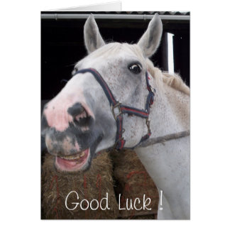 Smile Horse wish Good Luck Card