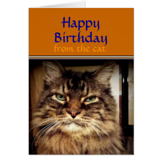 Smile its your Birthday Maine Coon Cat  Card