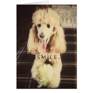 Smile Poodle Blank Greeting Card