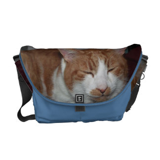 smiley cat messenger bag