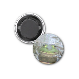 Smiley Frog 3 Cm Round Magnet