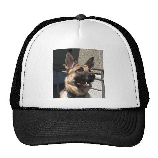 Smiley Shep Hat
