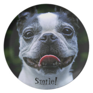 Smiling Boston Terrier Party Plate