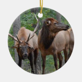 Smiling Bull Elk In Rut Ceramic Ornament