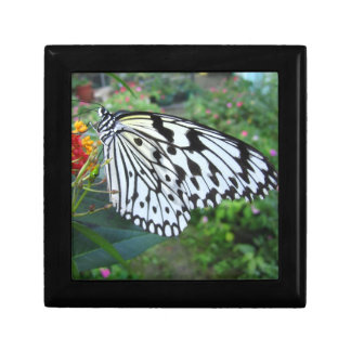 Smiling butterfly box small square gift box