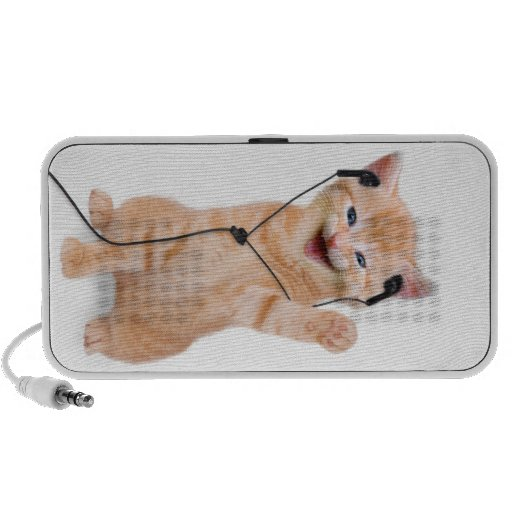 smiling cat with headphones laptop speaker
