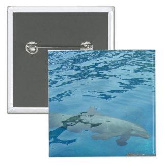 Smiling Dolphin 15 Cm Square Badge