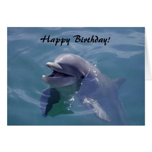 Smiling Dolphin Happy Birthday! Cards