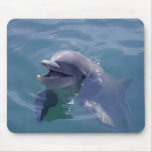 Smiling Dolphin Mouse Mat