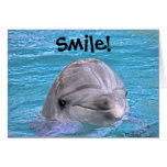 Smiling Dolphin - Smile! Card