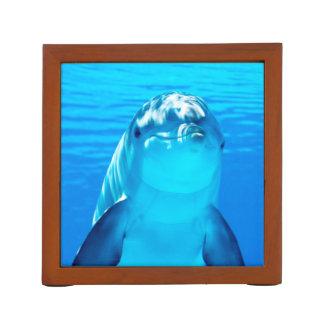 Smiling Dolphin Underwater Sea Life Desk Organisers