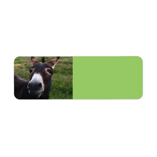 Smiling Donkey Avery Label Return Address Label