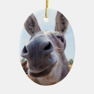 Smiling Donkey Christmas Ornament