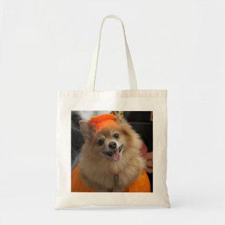 Smiling Foxy Pomeranian Puppy in Pumpkin Halloween