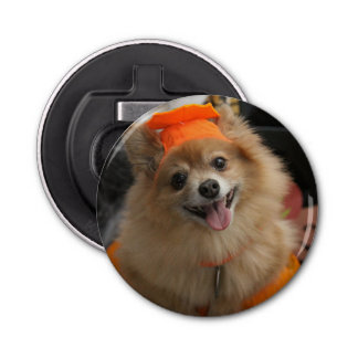 Smiling Foxy Pomeranian Puppy in Pumpkin Halloween Bottle Opener