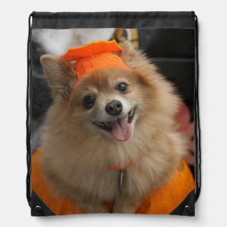 Smiling Foxy Pomeranian Puppy in Pumpkin Halloween Drawstring Bag