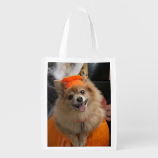 Smiling Foxy Pomeranian Puppy in Pumpkin Halloween Reusable Grocery Bag