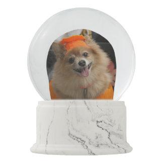 Smiling Foxy Pomeranian Puppy in Pumpkin Halloween Snow Globe