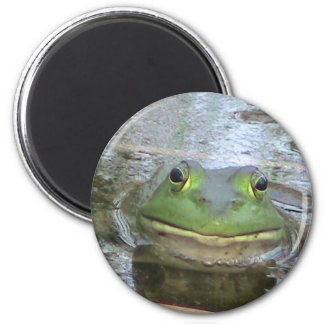 Smiling Frog Face 6 Cm Round Magnet