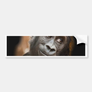 Smiling Gorilla Baby Bumper Stickers