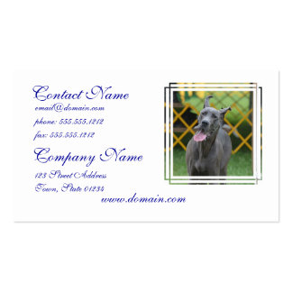 Smiling Great Dane Business Card